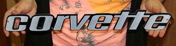 76L-1979 Corvette C3 Rear Bumper Metal Sign