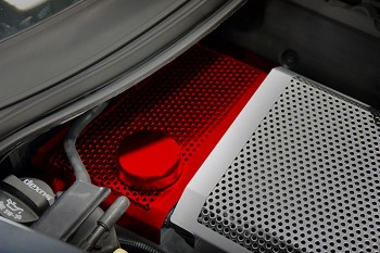 C7 Corvette Stingray 2014+ Custom Painted Stainless Steel Water Tank Cover - Perforated
