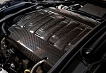 C7 Corvette Stingray 2014+ Carbon Fiber Center Engine Manifold Cover