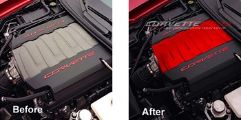 C7 Corvette Stingray 2014+ Custom Painted Engine Plenum Cover Overlay