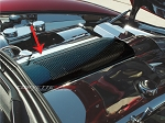 C6 Corvette 2005-2013 Hydro Carbon Fiber Plenum Cover - Perforated
