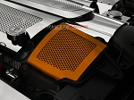 C6 Corvette Base / Grand Sport 2008-2013 Custom Painted Air Capacitor Cover Perforated- 2Pc