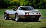 C3 Corvette 1981-1982 Two-Tone Divider Stripe Kit