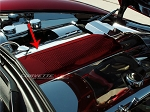 C6 Corvette 2005-2013 Custom Painted Plenum Cover - Perforated