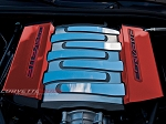 C7 Corvette Stingray/Grand Sport 2014+ Custom Painted Fuel Rail Covers Factory OVERLAY Trim