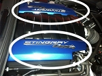 C7 Corvette Stingray 2014-2019 Z51 Smoothie Fuel Rail Covers w/ Airbrushed Logo