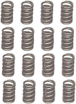 C4 Corvette 1968-1982  Small Block Valve Springs - Set of 16