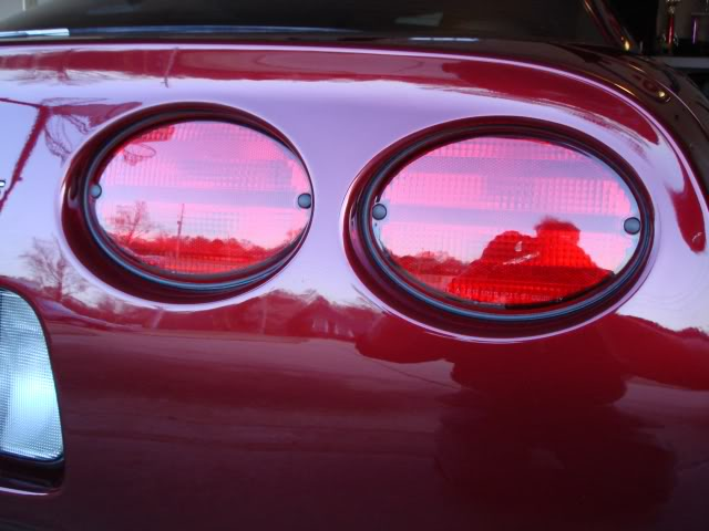 C5 C6 Corvette 1997-2013 Tail Light Seals | Corvette Mods