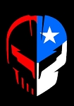 C8 Next Generation Corvette 2020+ Jake Skull Texas Decal