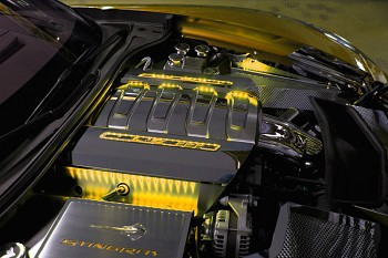 C7 Corvette Stingray/Grand Sport 2014+ Stainless Steel Illuminated Fuel Rail Cover Overlays